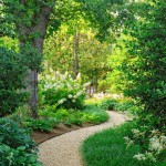 camino jardin verde