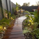 jardin helechos camino