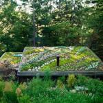 techo verde en una vivienda rural