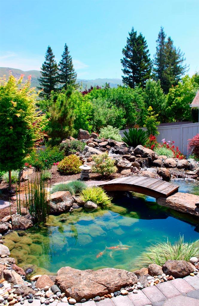 Jardines acuáticos, un lujo para los sentidos - Canexel