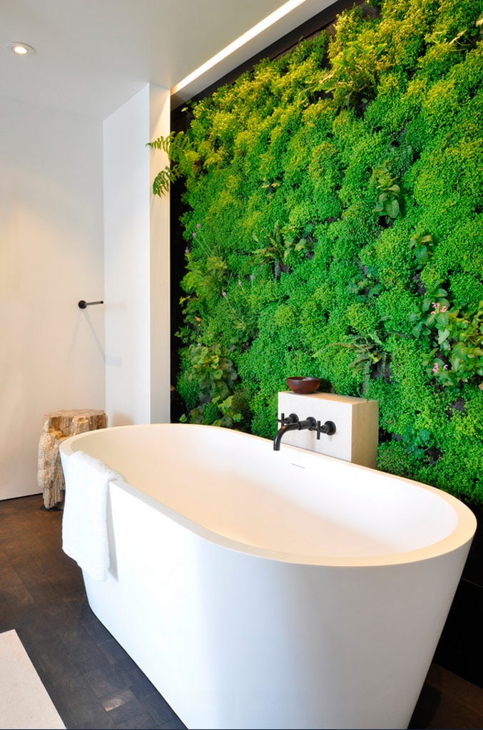 Jardines verticales una alternativa diferente canexel for Jardin vertical interior