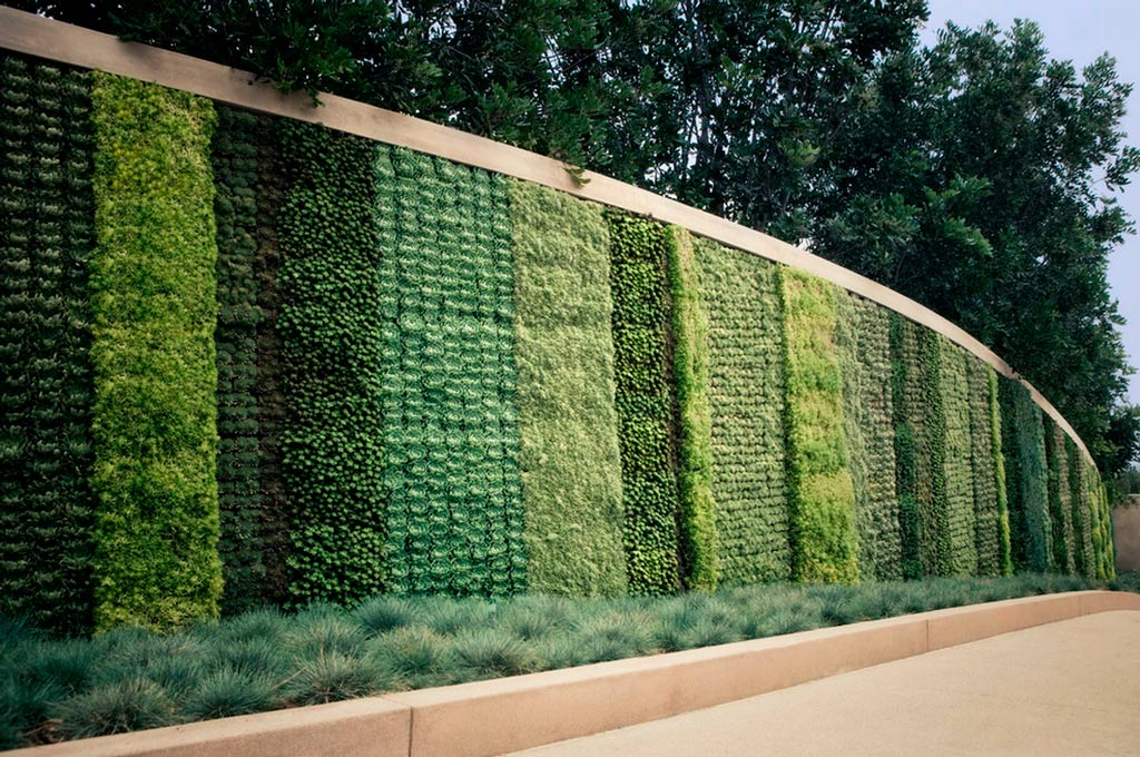 Jardines verticales una alternativa diferente canexel for Jardin vertical liofilizado