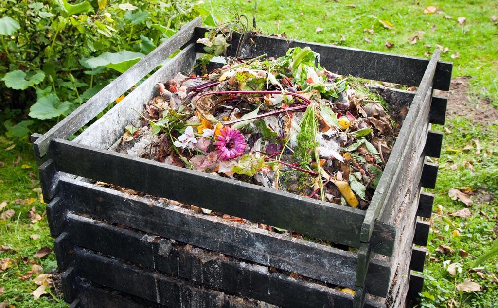 reciclaje residuos orgánicos